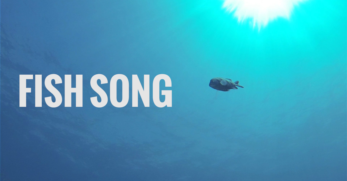 fish song mike votava music